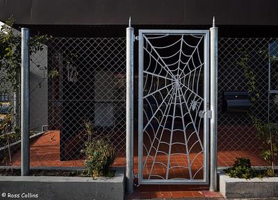 Arachnophobes beware